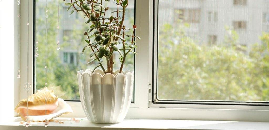 Заказываем металлопластиковые окна